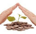 mãos cuidando de uma árvore de dinheiro