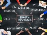 gráfico de recursos humanos