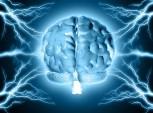 cérebro autoconhecimento